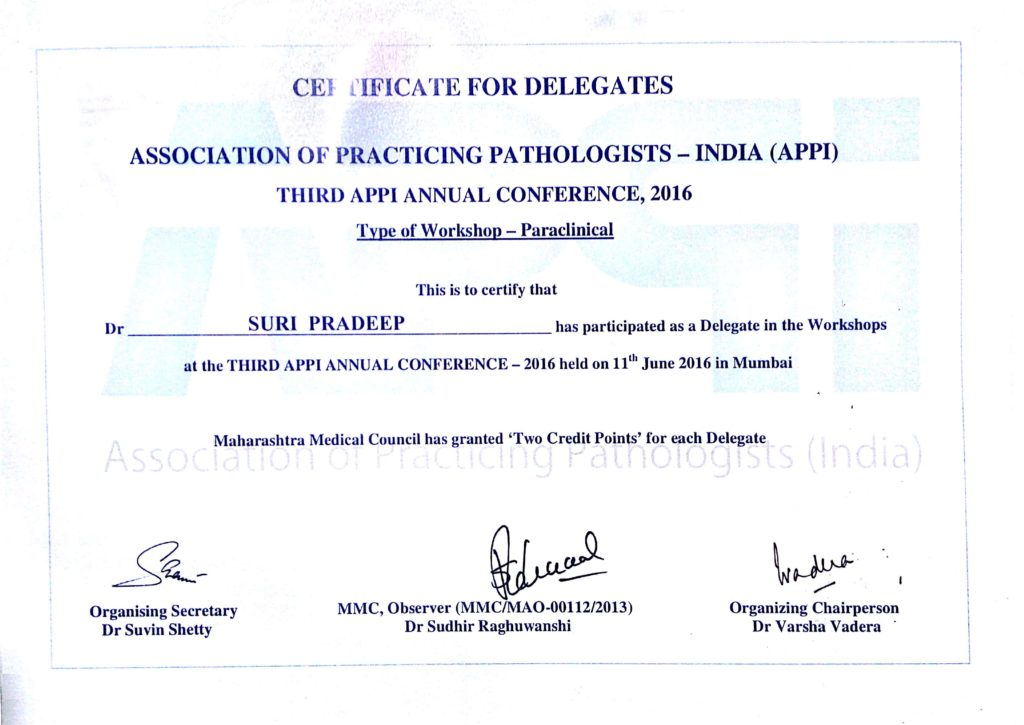 Certificate for Delegates (Third APPI Annual Conference, 2016)